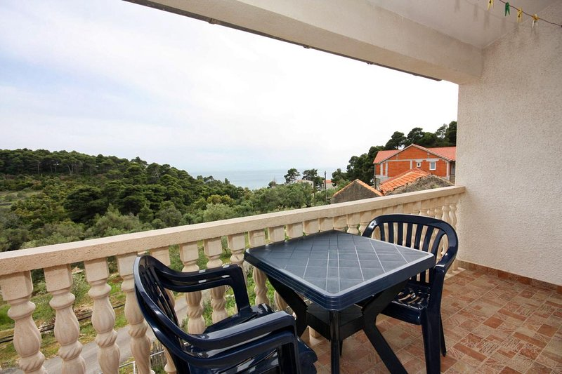 Tatinjica Apartment Sleeps 3 with Air Con - 5463609, holiday rental in Polace