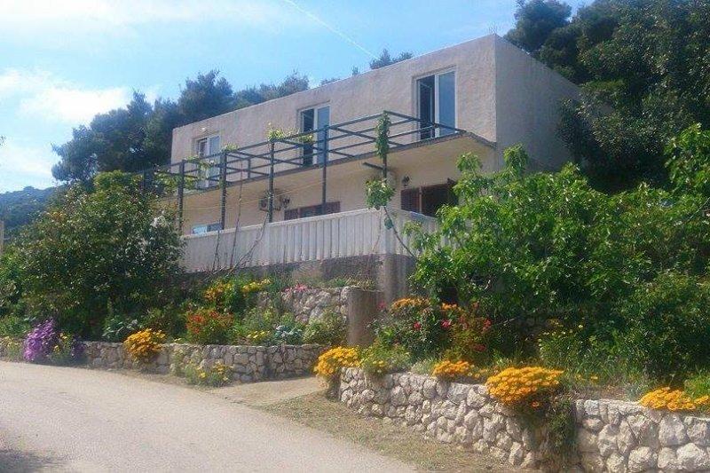 Room Cove Saplunara, Mljet (S-4907-b), vakantiewoning in Saplunara