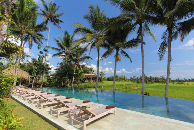 Luxury Retreat in middle of the ricefields, location de vacances à Kedewatan