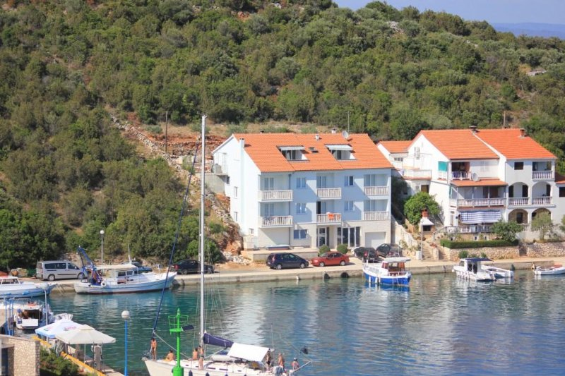 One bedroom apartment Zaglav, Dugi otok (A-8144-a), holiday rental in Luka