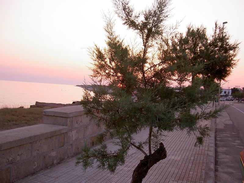 Torre Mozza con un bel tramonto sul mare