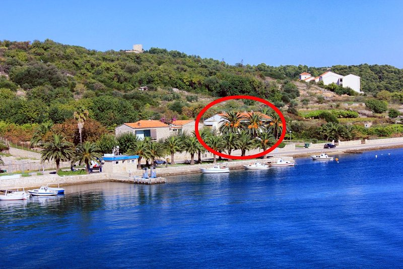 Two bedroom apartment Vis (A-13169-a), vacation rental in Vis