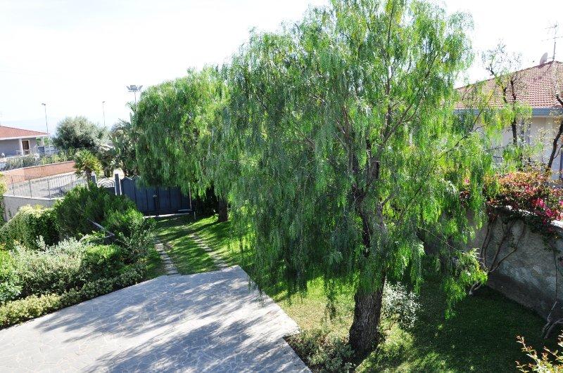 entrada y el aparcamiento privado del Villa Olea