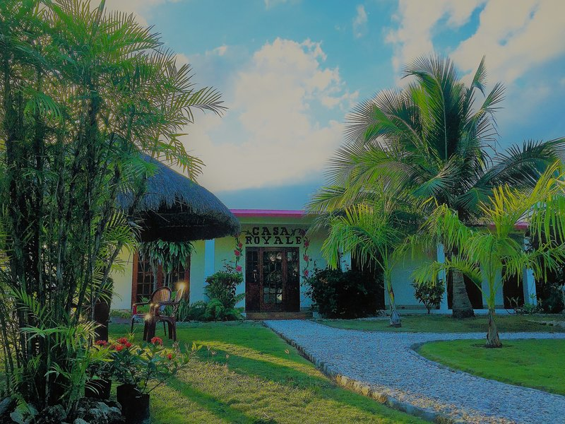 The house set amongst palm trees and the palapa.  A great place on a hot day.