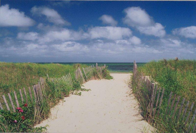 In der Nähe Strand auf Cape Cod Bay, 5 sicher Blocks entfernt