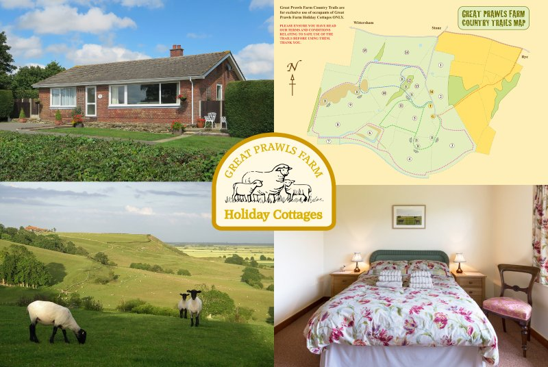 Stay on our peaceful family farm on the Kent / East Sussex border, 10 minutes from Rye.