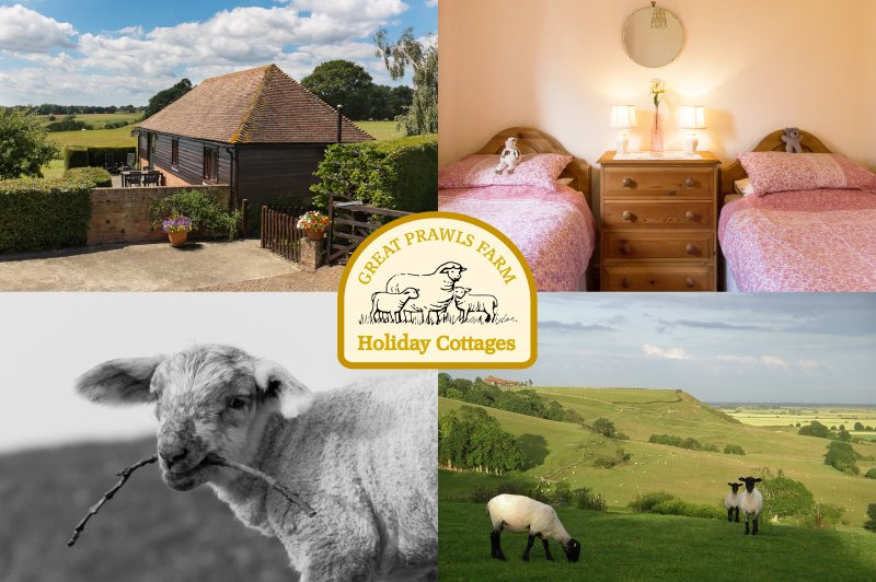 Tamworth Cottage, Great Prawls Farm, holiday rental in Stone in Oxney