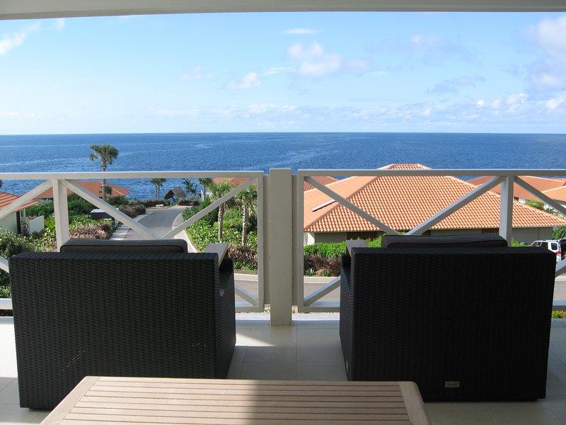 La vue depuis la terrasse principale
