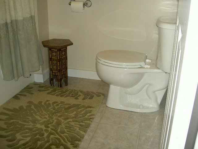 Toilet, title on floor, rug and shower with small table