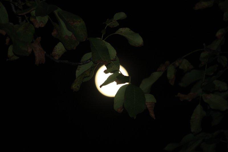 vistas do imovel noite