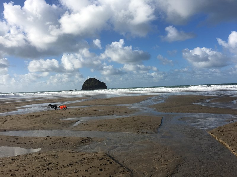 playa de Trebarwith Strand