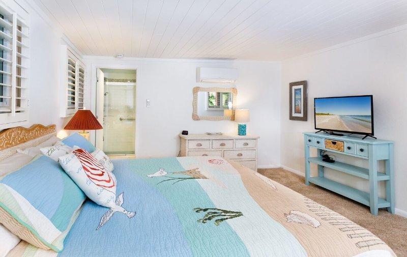 Dormitorio principal mostrando la entrada del baño y TV