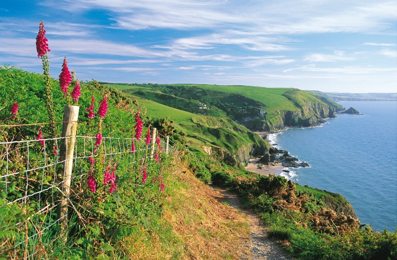 Amazing walks and views from the Coastal Path