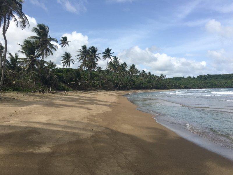 Minister's Bay