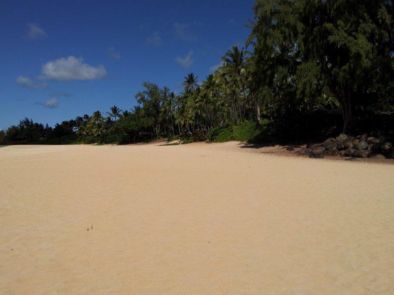 Tiempo de verano en la playa por la casa!