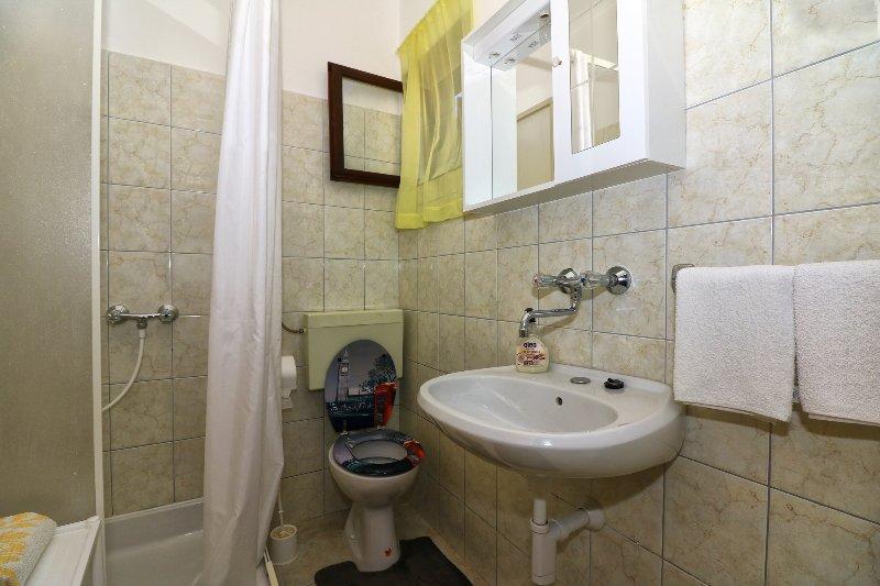 Veliki (4+2): bathroom with toilet