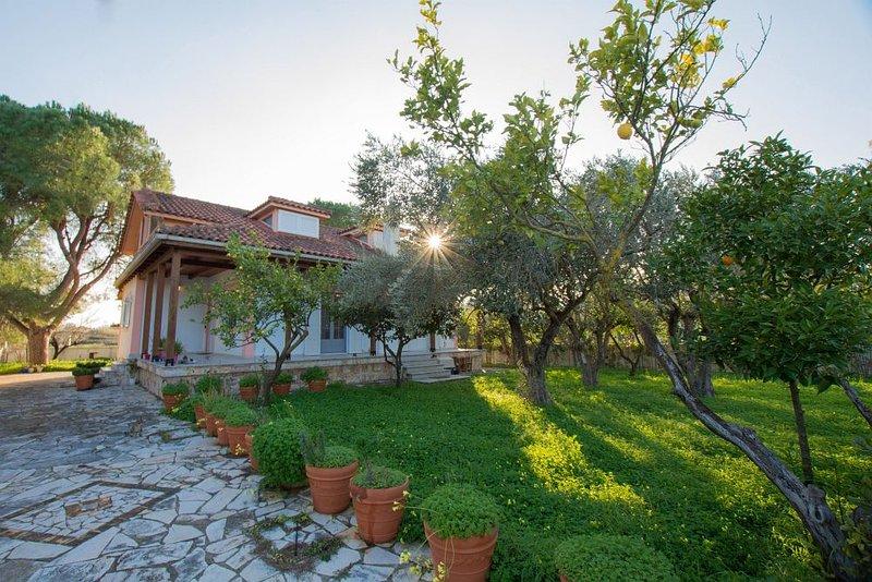 Ilenia's 3-Bedroom Holiday House, holiday rental in Laganas