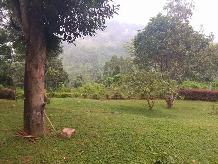 The Kandy Homes (2 BR Downstairs), vacation rental in Kadugannawa