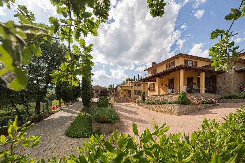 POGGIO PELLICCIAIA - RUBY, vacation rental in Pieve A Maiano