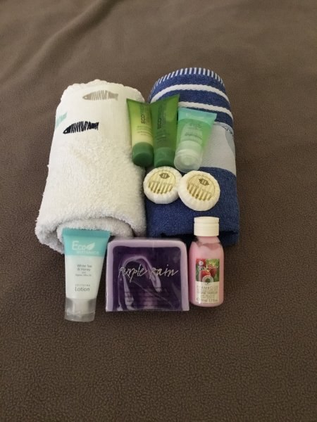 bath linen and towels provided with hygiene products for your arrival