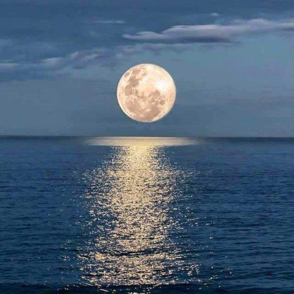 Blue Moon, Maceio