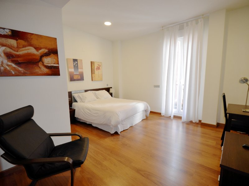Big apartment in downtown Madrid, vacation rental in Madrid