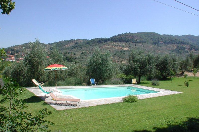 Tregozzano Villa Sleeps 6 with Pool - 5490476, vacation rental in Rigutino