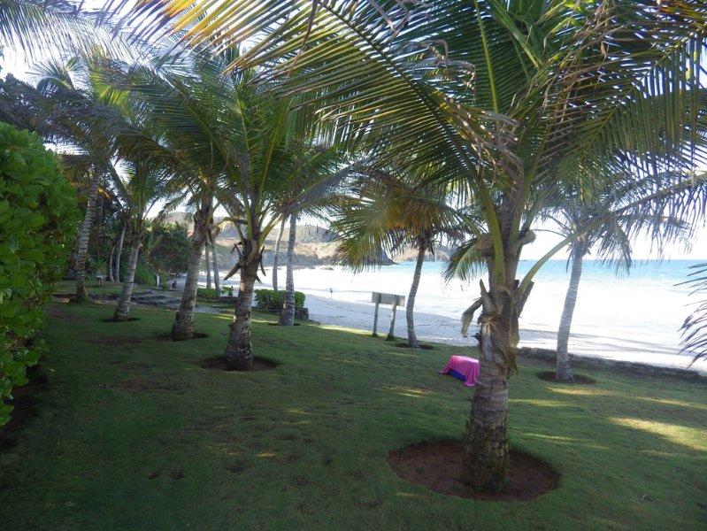 beach Puerto Real