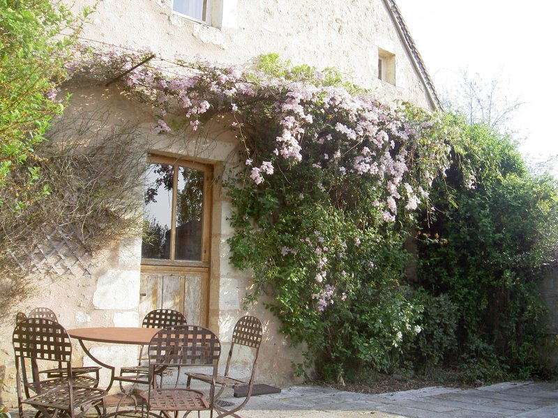 Amazing house with garden & terrace, holiday rental in Saint-Germain-des-Grois