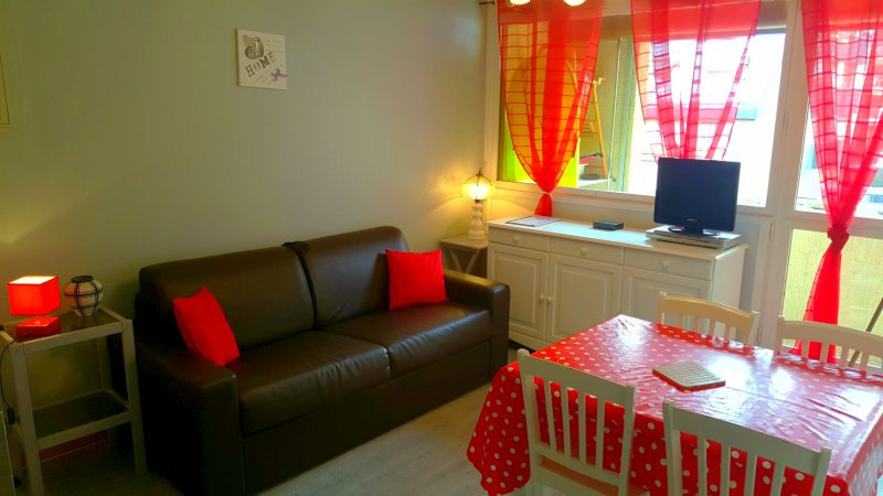 Studio cabine -  St Lary Soulan Village - 4 pers, vacation rental in Saint-Lary-Soulan