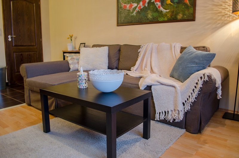 Cosy apartment in the Centre of Veszprém, holiday rental in Balatonalmadi