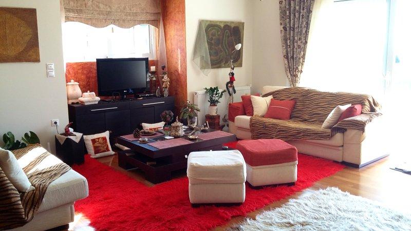 Spacious house with sea view & Wifi, holiday rental in Palaia Fokaia