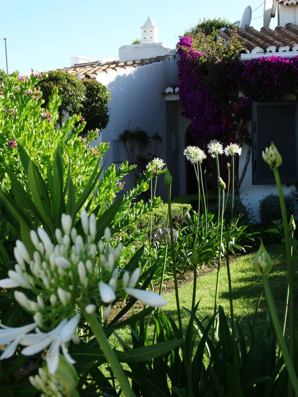 jardin de devant