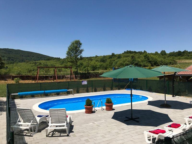 Beautiful apt with shared pool, holiday rental in Rakovica