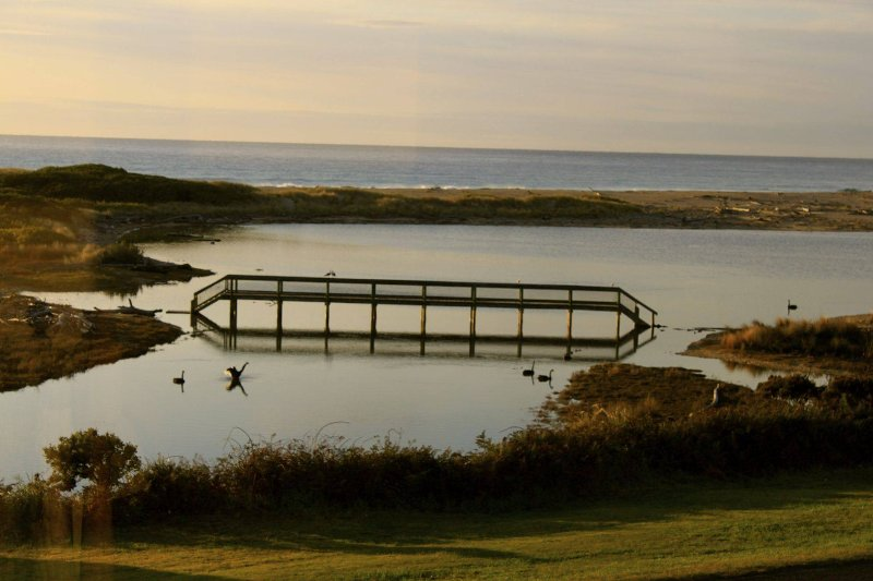 Swan Cottage Laguna / vista al mar