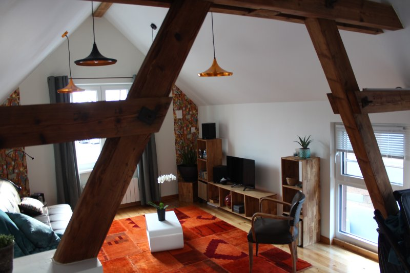 Charmant studio de 34m2,indépendant,tout confort, au coeur d'un village viticole, aluguéis de temporada em Epfig