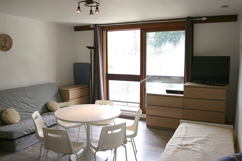 Nice studio - 100 m from the slopes, holiday rental in Le Corbier