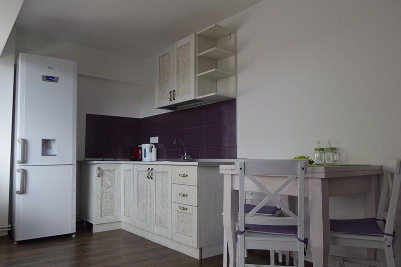 Cucina aperta con frigorifero, piastre elettriche, bollitore elettrico, tostapane e utensili