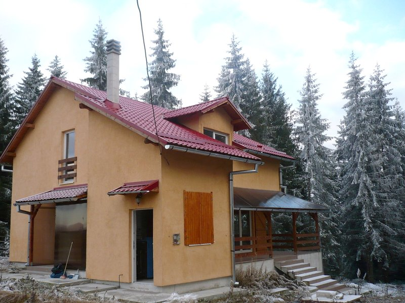 Amazing house with terrace, holiday rental in Capusu Mic