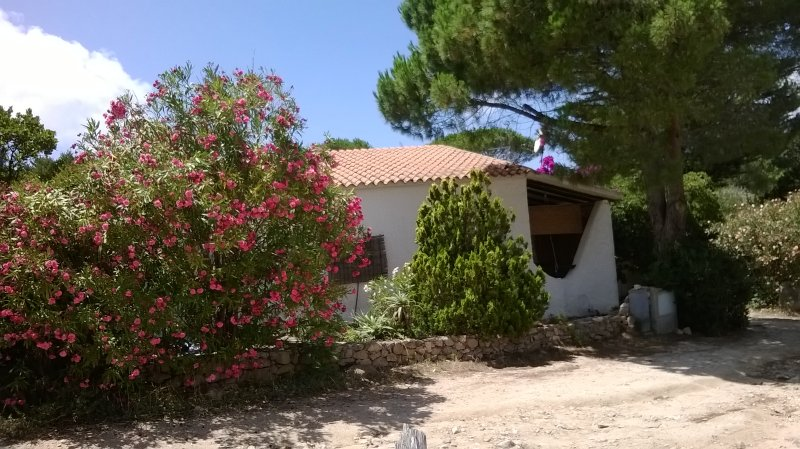 Casa Vacanze Rena Majore, Sardegna, holiday rental in Aglientu