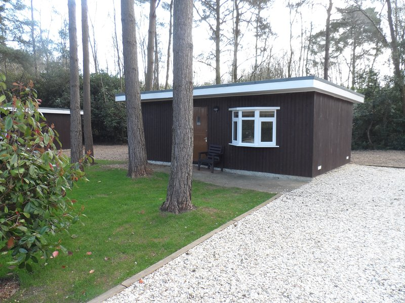 Beautiful Three Bedroom log Cabin located in Woodland settings with Large lake, holiday rental in Sandhurst