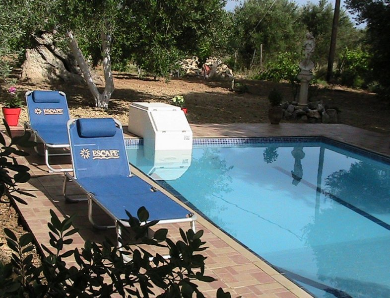 Rest at Afroditi villa for holidays in an authentic Cretan nature field!, vacation rental in Stavromenos Rethymnis