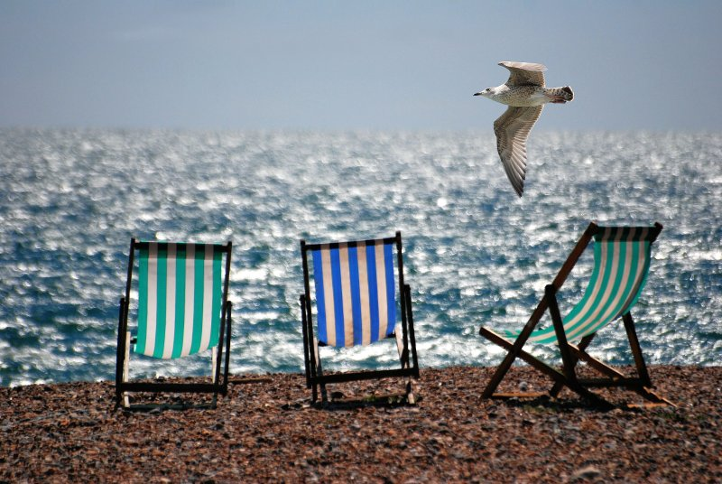 Watch out for the seagulls! Keep your pasty close :-)