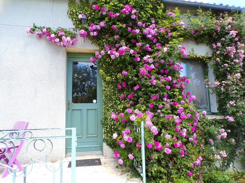 Spacious house with garden & Wifi, holiday rental in Cenon-sur-Vienne