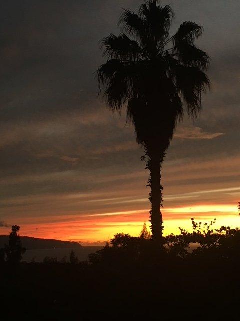 Hermosas puestas de sol desde la cubierta