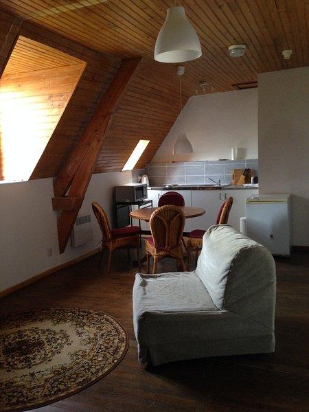Amazing apt with pool access & Wifi, location de vacances à La Barthe-de-Neste