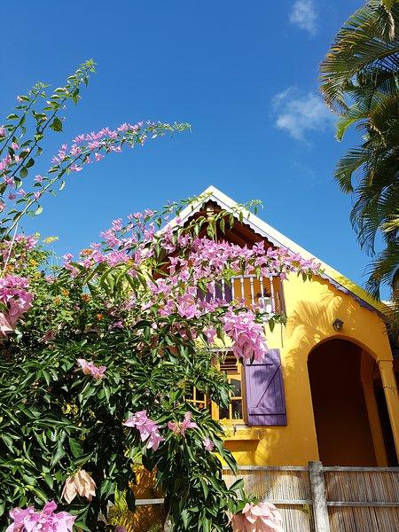 MAYOL' Villa  en Guadeloupe, location de vacances à Capesterre-Belle-Eau