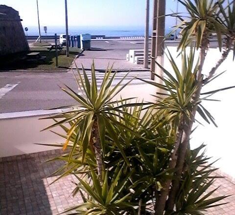 View from Room 1 balcony sea