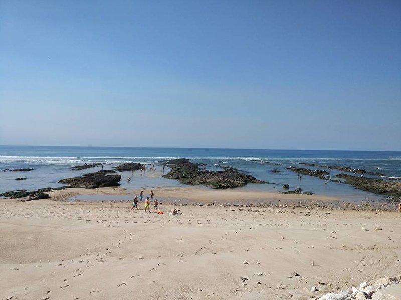 La plage en face quand la marée est vide. Moules à cueillir