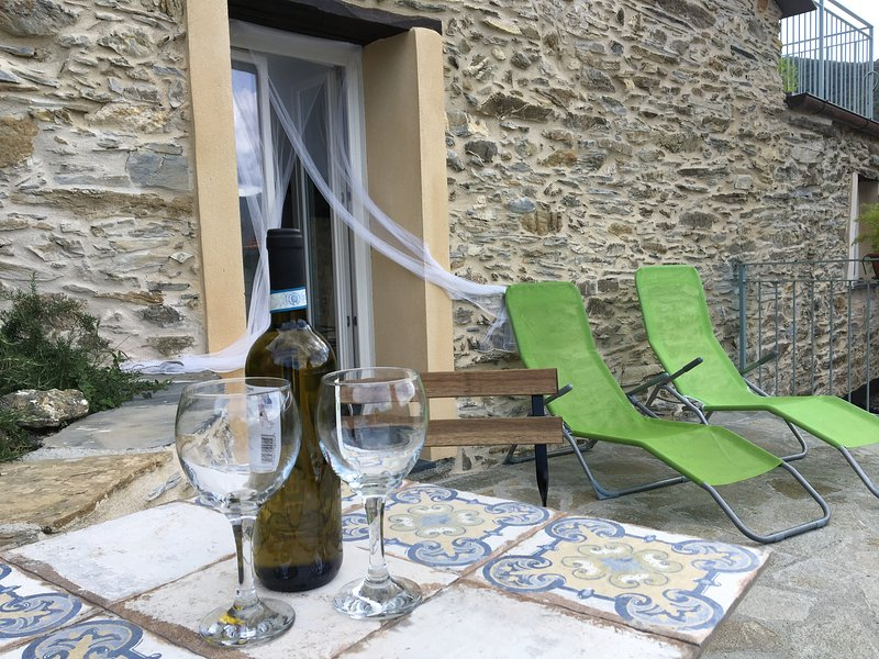 Charme,confort,  in stone house with  private terrace , patio and view, vacation rental in Nasino